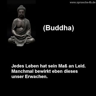 sprüche zum nachdenken buddha zitate deutsch