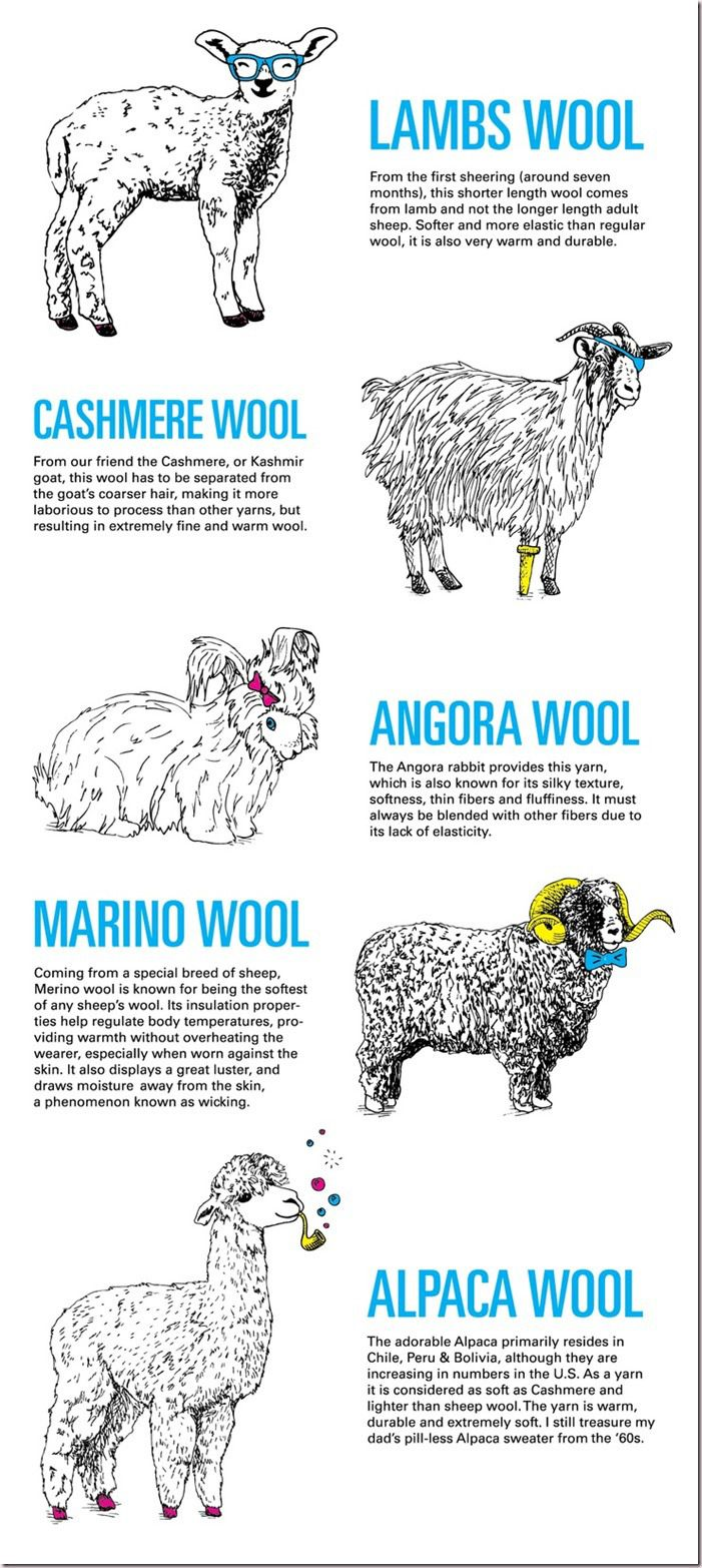 some of the different animals we get yarn from (add Bison, Yak, etc)