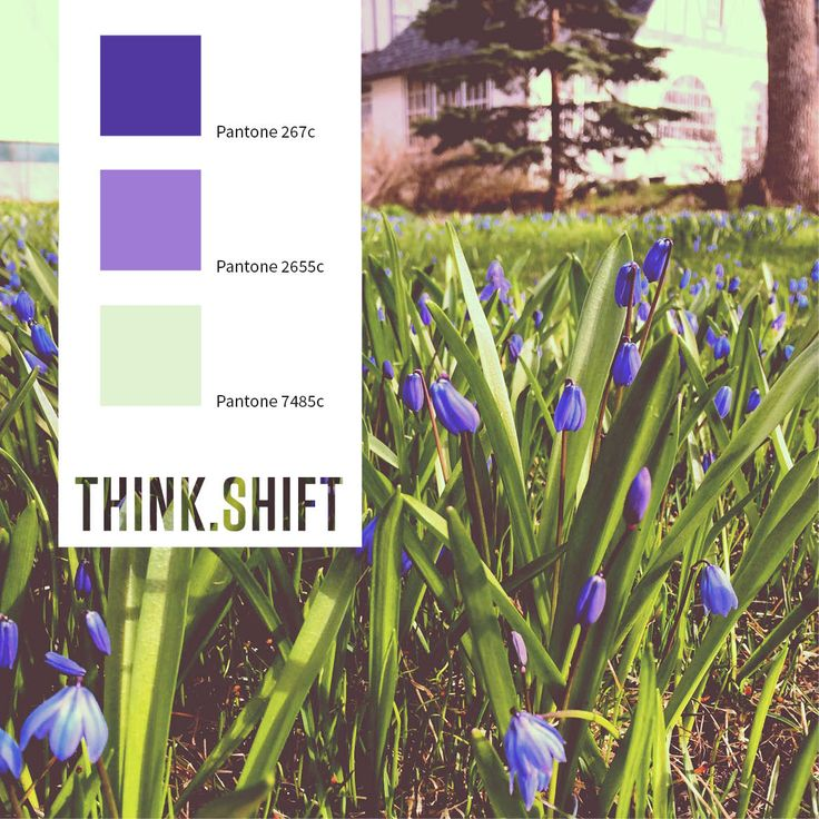 May long weekend! #colourscheme #spring (photo credit: Michelle Gamache)