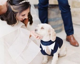 Formale cane Tuxedo Wedding Tuxedo per cani Custom Made