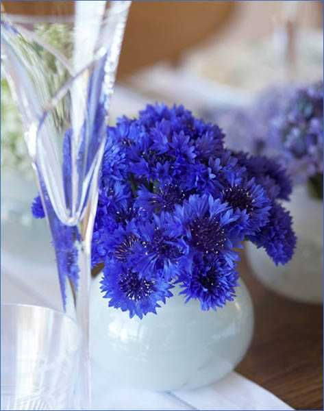 Elegant Flower Arrangements And Spring Decorating Ideas