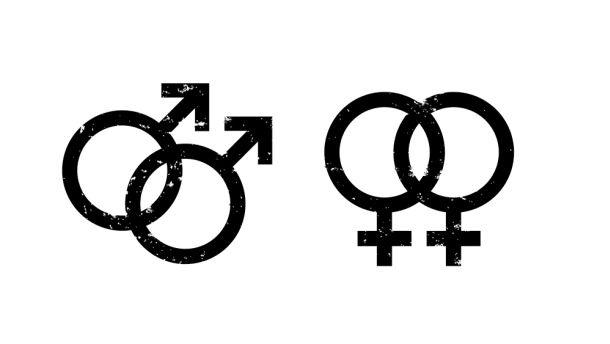 Urteile zur Homo-Ehe: Blüm greift Verfassungsgericht an