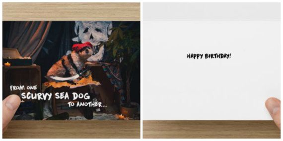 "The Frumpy Dog Birthday Card: ""From one scurvy sea dog to another Happy Birthday!"""