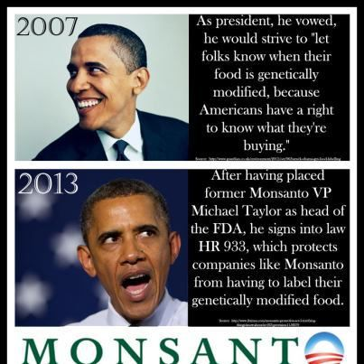 Obama lied about GMO food and our right to know what is in our food.  Once in office,  he hired the Monsanto VP to head the FDA, and did the exact opposite of what he said he would do.