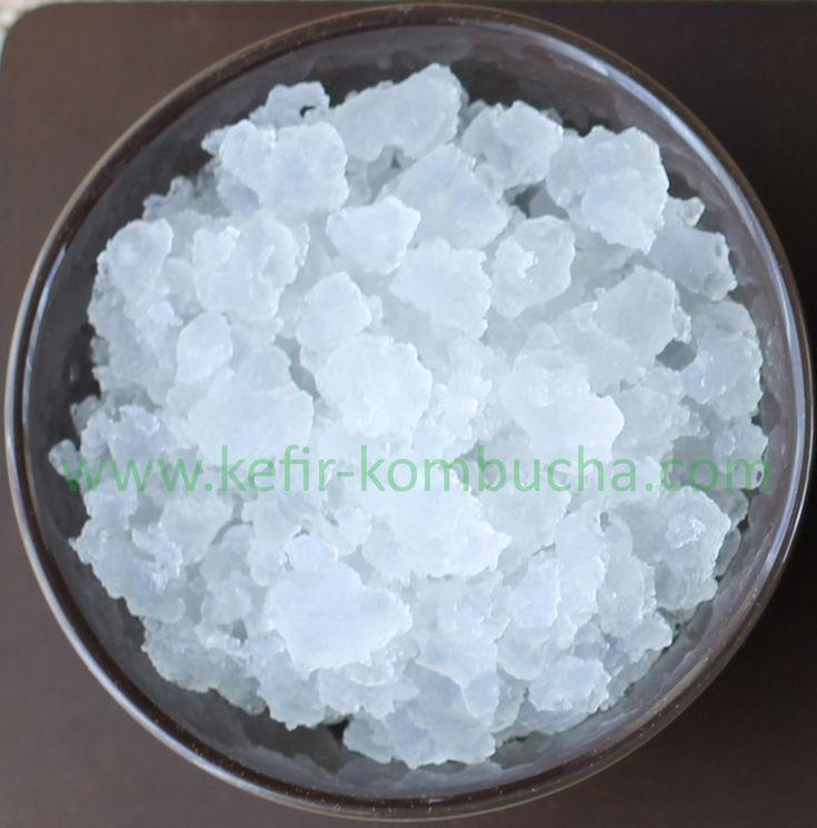 Acheter du kefir de fruits - Livraison rapide: kefir de fruits,