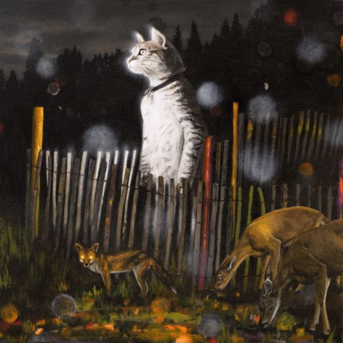 standing cat in a sheepcote / heiko müller