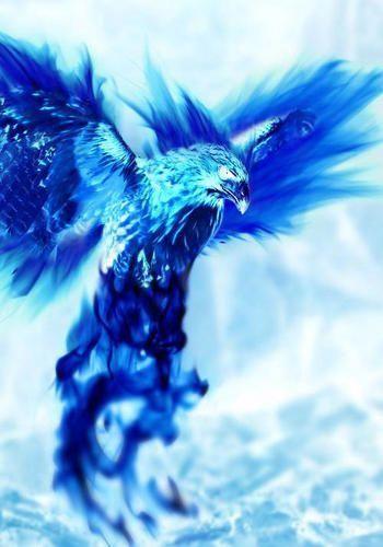 fenix azul | tattoos | Phoenix drawing, Phoenix bird, Blue ...