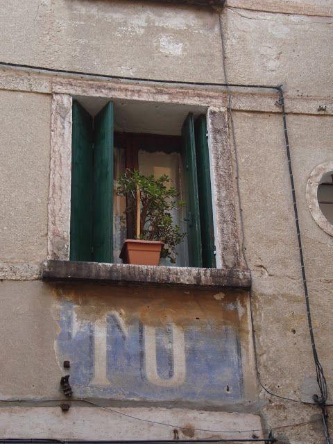 Bassano del Grappa (Vicenza) Foto-diario di una giardiniera curiosa