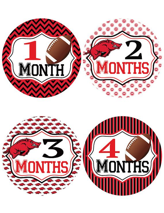 Arkansas Razorback Baby Belly Stickers ~ Monthly Baby Milestone Stickers (298)