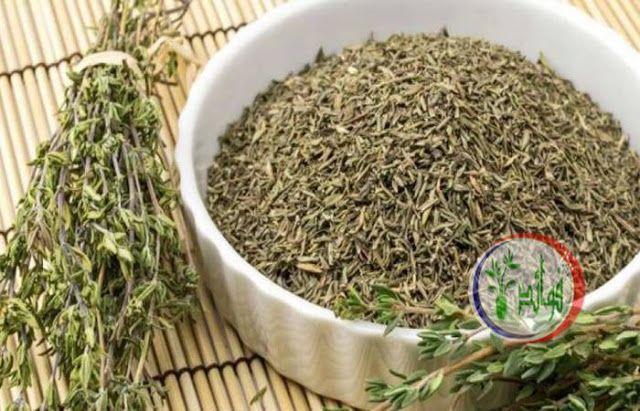 فوائد الزعتر البري إليك أبرزها للجسم ولنظافة المنزل Herbs How To Dry Oregano How To Dry Basil