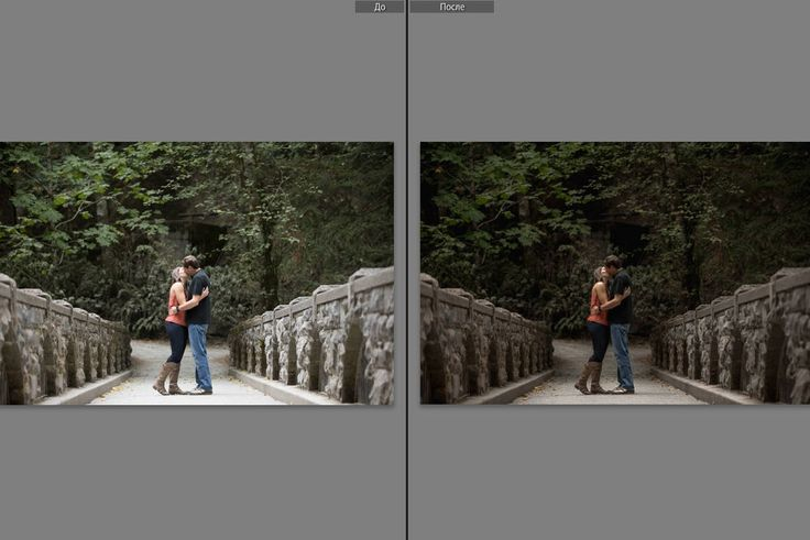"Professional Adobe Photoshop Lightroom Preset ""Deep_forest_Canon"". Instant Download. True colors. Pop. Modern. Wedding. by CameraClick on Etsy"