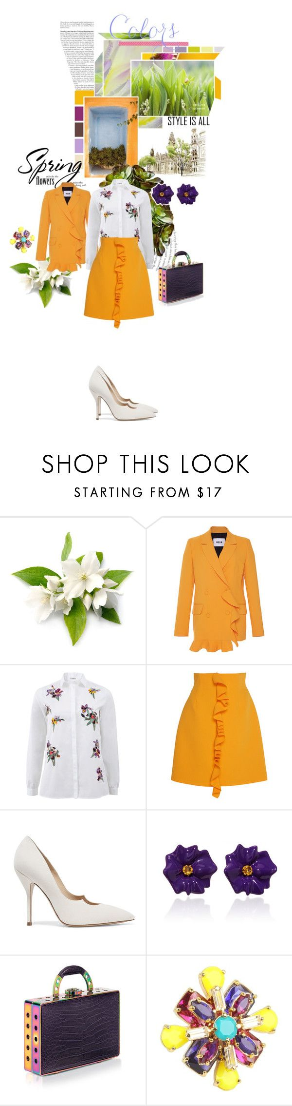 """2232.Spring and flowers"" by sylviedupuywriter ❤ liked on Polyvore featuring MSGM, Etro, Paul Andrew, Sabbadini, Bougeotte and Kate Spade"