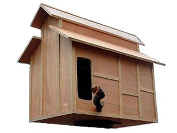 Barn owl house, very cool