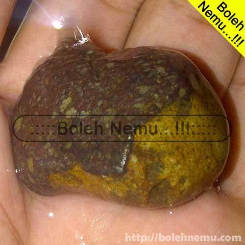Batu Kuarsit Dwi Warna -  #Batu #Kuarsit #Coarse #Unik