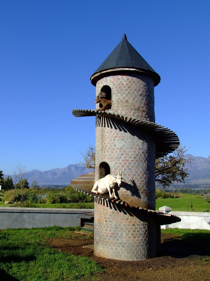 The Goat Tower - A Caprine Condominium.  Goats climbing the tower at the Fairview winery in Paarl, near Cape Town.