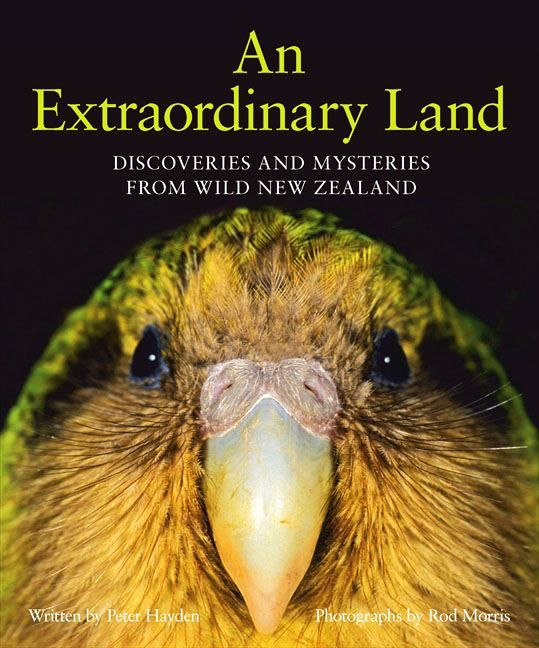An Extraordinary Land by Peter Hayden and Rod Morris