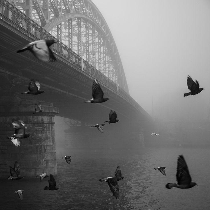 Cracow #bw #street #fog