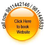 MLM Customised Solution - India Website Design Development