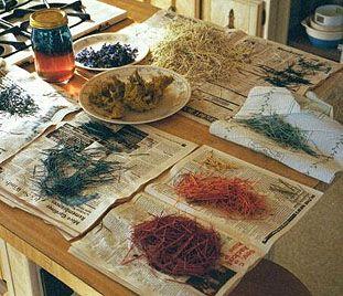 Tintes naturales, si la naturaleza nos da todo, ¿por qué se empeñan en utilizar químicos y productos que causan daño al medioambiente?