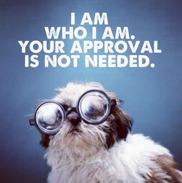 I am who I am! Your approval is not needed. Don't let others dictate how you feel. Be yourself!