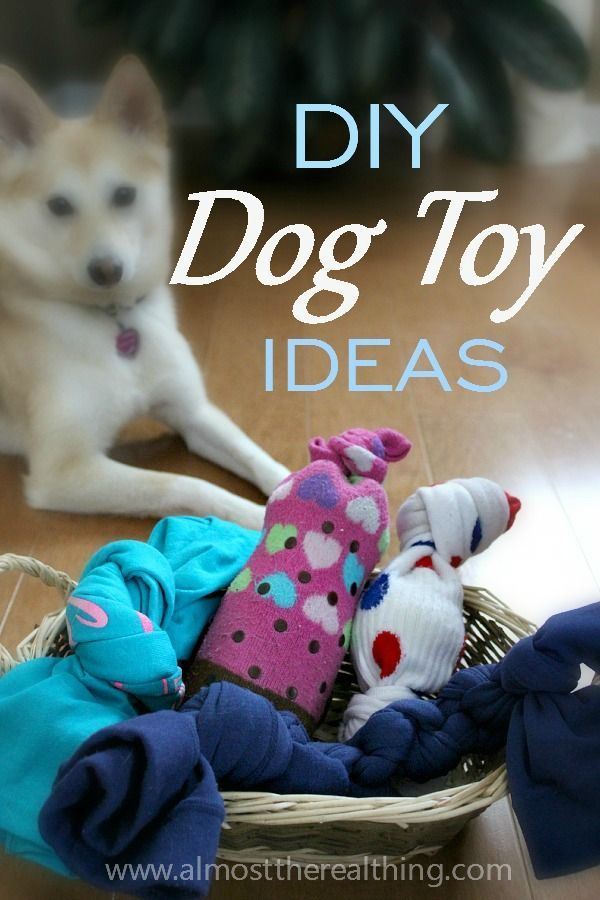 Save money by making your own toys for dogs.