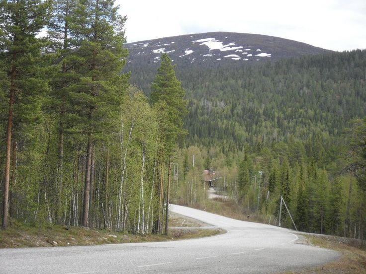 Landscape Pallas-Ylläs National park