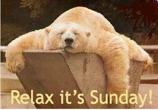 Sunday: Happy Sunday, Happy Mondays, Ears Mornings, Sleepy Time, Polar Bears, Animal Kingdom, Chine Medicine, Relaxing Techniques, Adorable Animal
