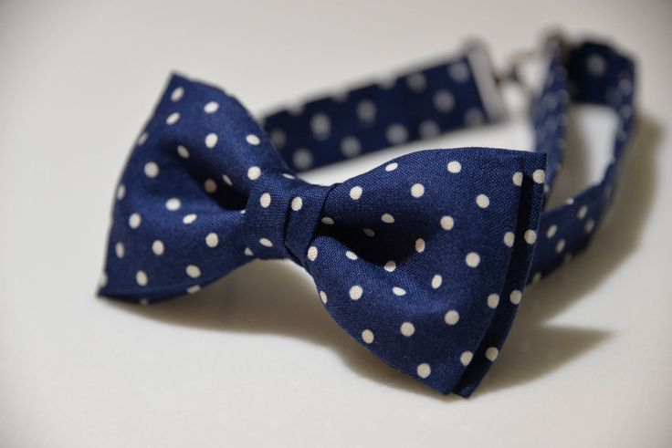 A personal favorite from my Etsy shop https://www.etsy.com/listing/538307697/children-bow-tie-navy-blue-kids-bow-tie
