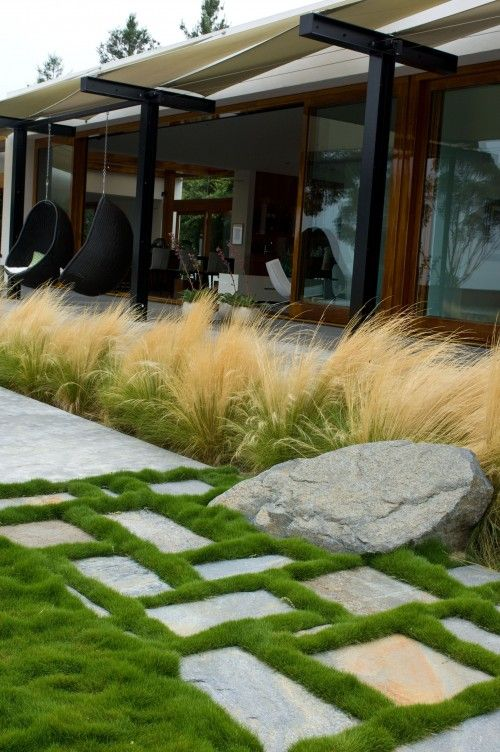 pretty sure I've pinned this before, but I love it so...contemporary exterior design by san diego landscape architect Grounded - Richard Risner RLA, ASLA [mounding dwarf korean grass? -- zoysia tenuifolia -- and stipa tenuissima]