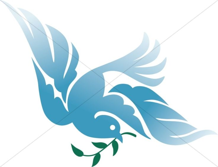 The Bible >> Dove of Peace | Peace, Holy spirit and Bible