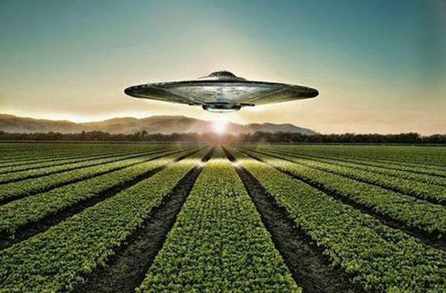 Mensagem do espaço: Franceses filmam OVNI fazendo desenhos nas plantações ~ Sempre Questione - Últimas noticias, Ufologia, Nova Ordem Mundial, Ciência, Religião e mais.