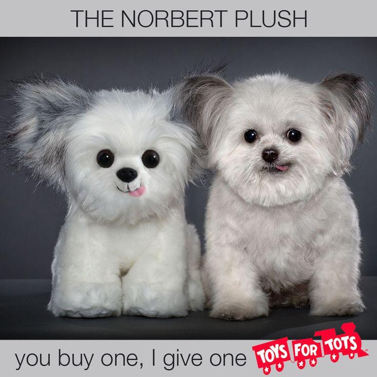 Norbert Plush_TFT Logo.jpg Norbert will donate a Norbert