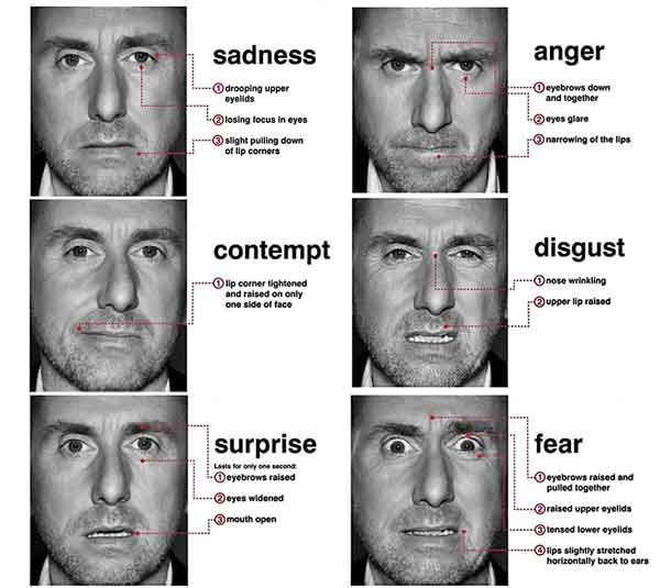 14 best Microexpressions images on Pinterest | Faces ...