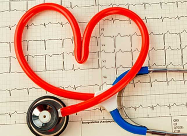 Сердечная недостаточность у собак возникает как исход большинства сердечно-сосудистых болезней, серьезной причиной нарушения физической выносливости и снижения продолжительности жизни.
