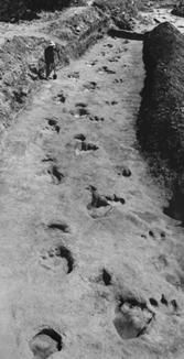 Paluxy River...Glen Rose,Texas ~ human AND dinosaur footprints: