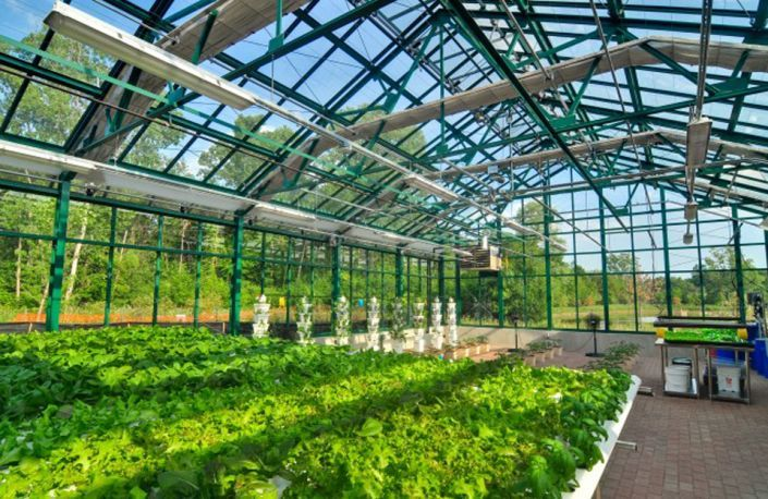 Hospital serves organic food grown for them, The greenhouse features strawberries, tomatoes, microgreens, and much more.  http://piecefit.com/index.php/en/environment-all/solutions/item/129-interview-million-dollar-organic-greenhouse-farmer-hopes-other-hospitals-follow-suit#k2Container