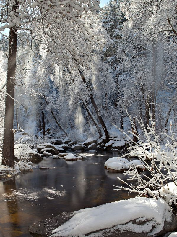 Photos like this make me love winter!