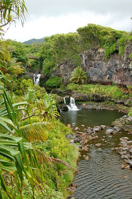 visitheworld:  The Seven Sacred Pools in Haleakala National Park, Hawaii, USA (by La Ola).