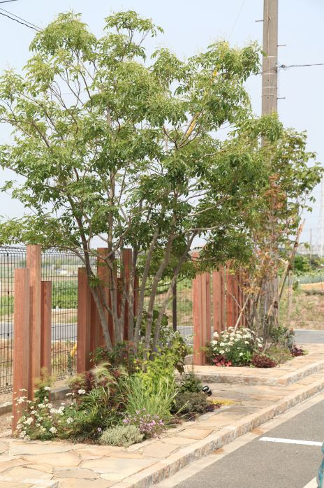 植栽 / スリットフェンス / タイル貼り / ナチュラルガーデン / ガーデンデザイン / 外構 Garden Design / Tree / Plants / Slit fence / Tile