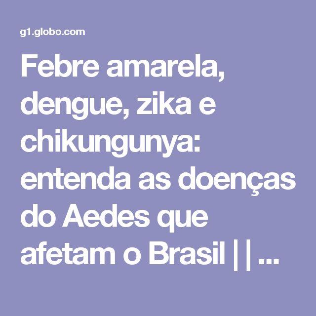 Febre amarela, dengue, zika e chikungunya: entenda as doenças do Aedes que afetam o Brasil | | G1