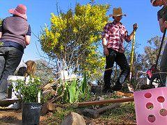 Joel Salatin: debt-free farming for beginners