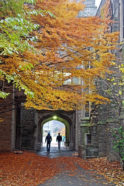 On a cold overcast Saturday afternoon, the fall leaves decorate the entrance to a passageway by one of the older buildings at McMaster University in Hamilton.