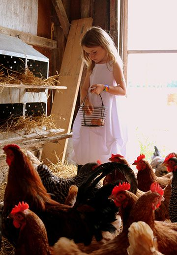 Winners Announced in National Farm Photo Contest Category 4 - Farm Faces Photo by Becki Irwin - 1st place