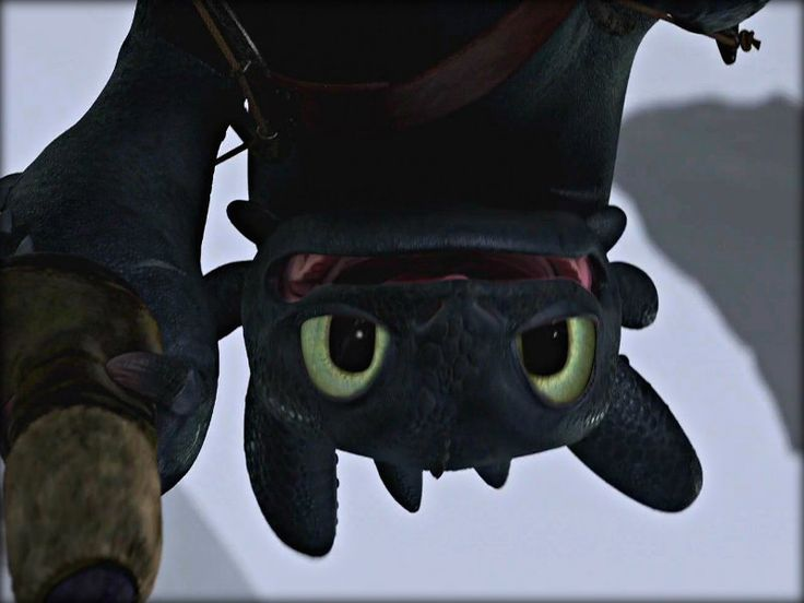 httyd toothless upside down wallpaper -#main