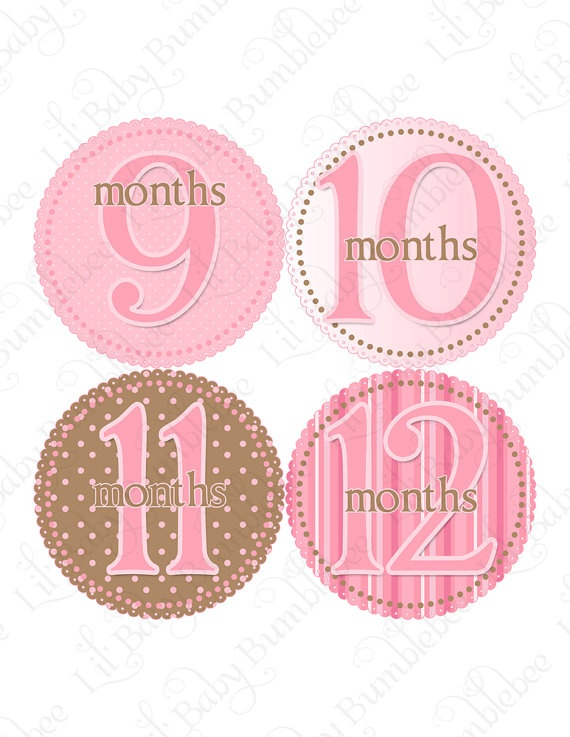 I wish I had bought these for Brooke...Monthly Onesie Stickers  Valentina  Baby by LittleBabyBumblebee, $9.00