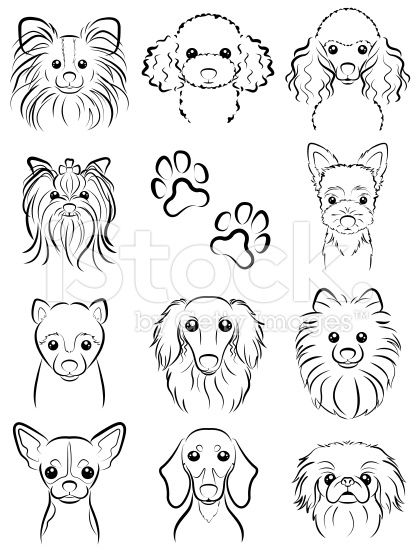 Dog / Line drawing royalty-free stock vector art