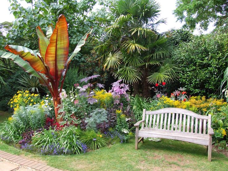 Gallery | Abbotsbury Subtropical Gardens | Jungle gardens ...
