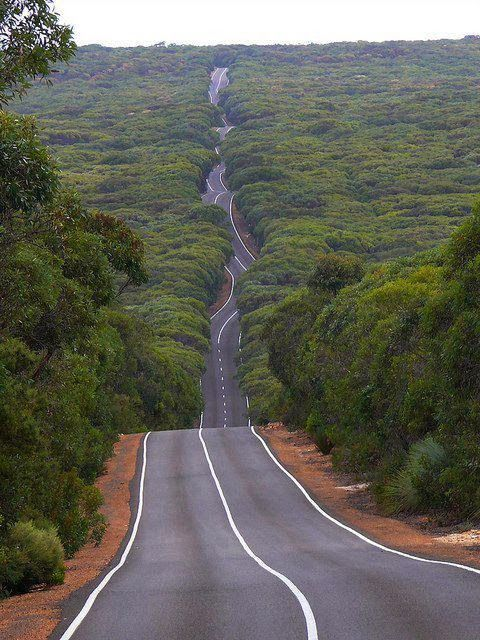 Australia Kangaroo Island Road in Flinders Chase National Park... just looking at this makes me want to run