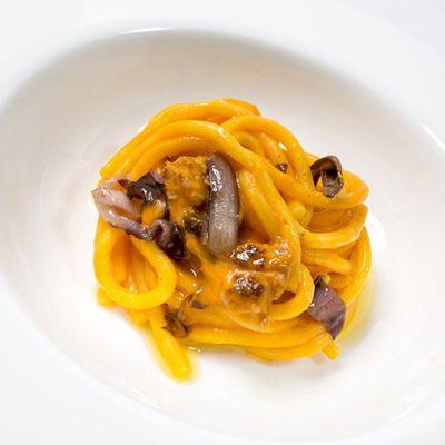 Bigoli with Pumpkin Cream, Casatella DOP Trevigiana Cheese, Radicchio Rosso di Treviso IGP and Sausage - Radicchio di Treviso - Radicchio di Treviso