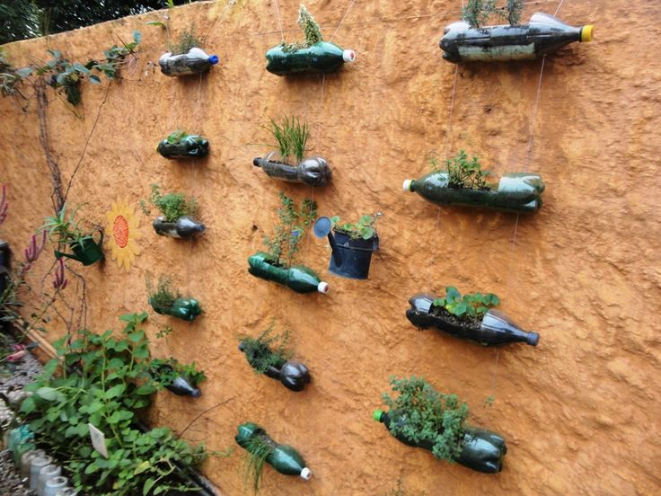 17 best images about permaculture backyard gardens on for Small permaculture garden designs